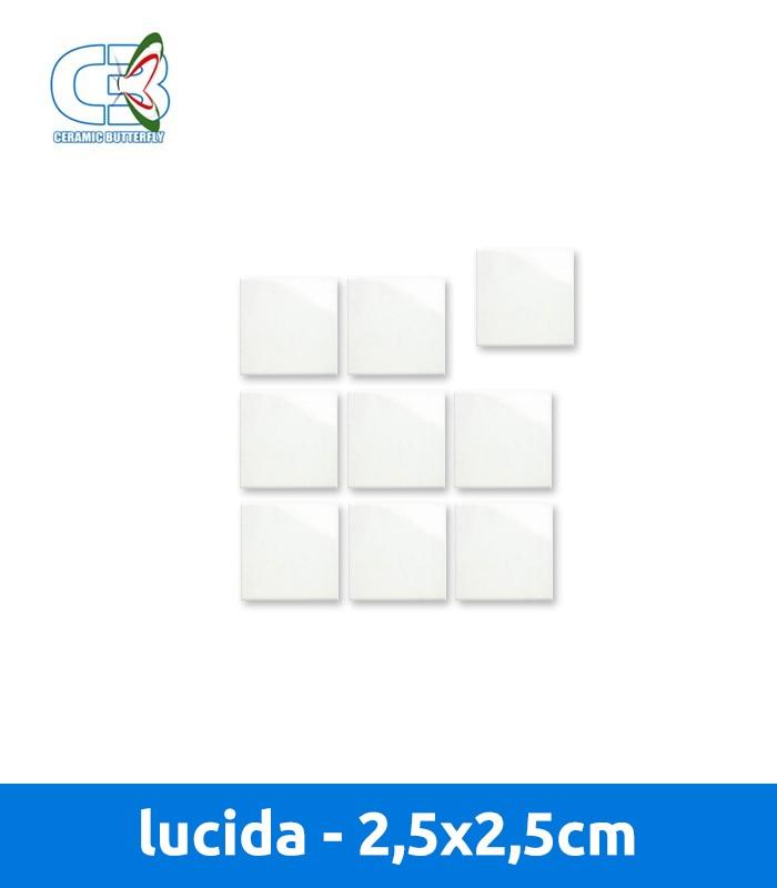 Piastrella 2 5x2 5 cm lucida - Piastrella bianca lucida ...