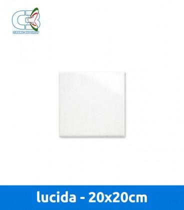 Piastrella lucida 20x20 cm 1mq - Calcolo mq piastrelle ...