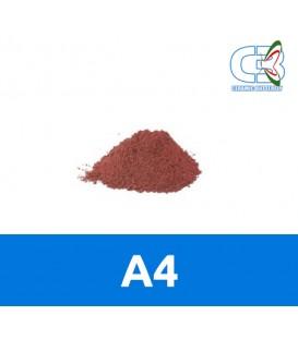 Developer Rosso - A4